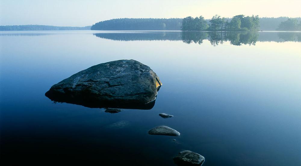 Naturen vet bäst hur vatten renas - Vår metod är naturlig vattenrening!